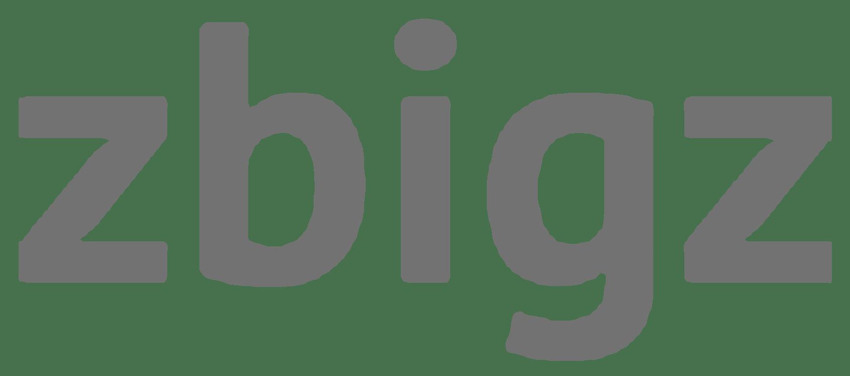 Zbigz.com Logo Main